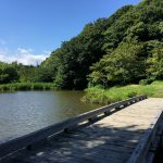 佐鳴湖公園内 ひょうたん池②